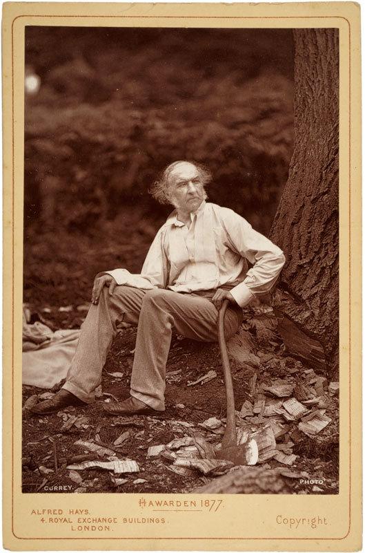 Portrait of Hawarden 1877, William Gladstone